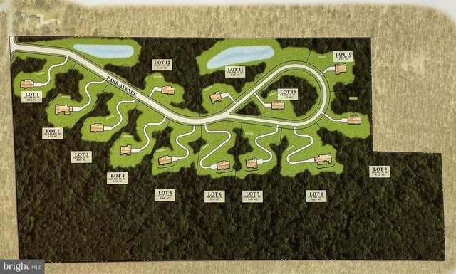 0 Blue Mountain Parkway, HARRISBURG, PA 17112 (#PADA2000216) :: Iron Valley Real Estate