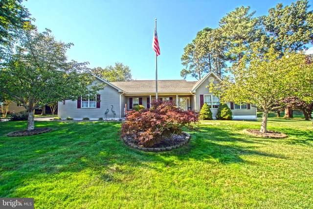 33699 N Heron Drive, LEWES, DE 19958 (#DESU2000277) :: Linda Dale Real Estate Experts