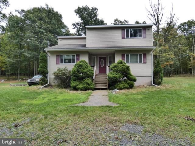 12 Summit Drive, WHITE HAVEN, PA 18661 (#PALU2000007) :: Linda Dale Real Estate Experts