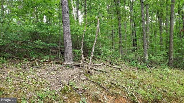 128 Rappahannock Trail, WINCHESTER, VA 22602 (#VAFV2000085) :: The Piano Home Group
