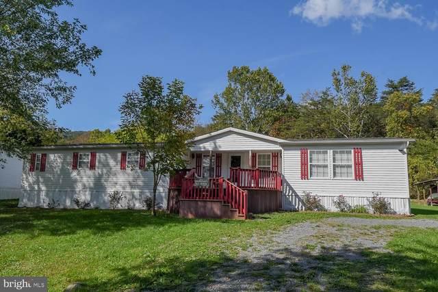 91 Rock Creek, KEYSER, WV 26726 (#WVMI2000021) :: The MD Home Team