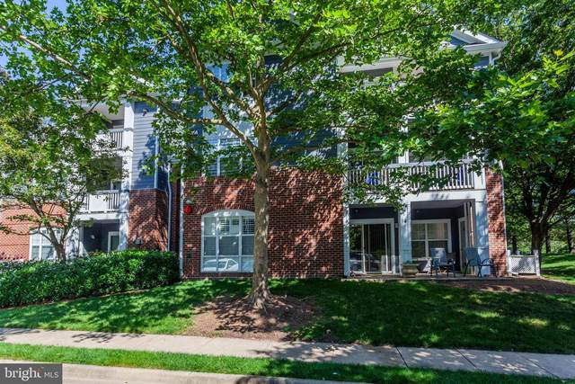 20311 Beechwood Terrace #102, ASHBURN, VA 20147 (#VALO2000610) :: Eng Garcia Properties, LLC