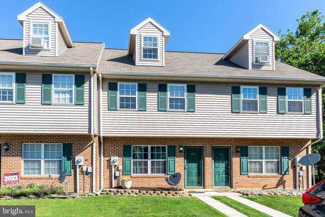 111 Orchard Ln, HANOVER, PA 17331 (#PAYK2000384) :: The Schiff Home Team