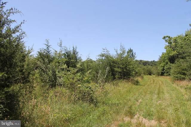 Lot 1 Shenandoah Path, CATLETT, VA 20119 (#VAFQ2000108) :: A Magnolia Home Team