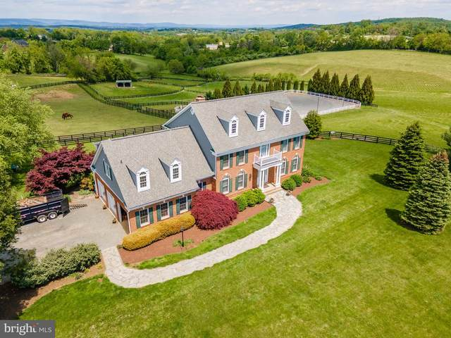 16395 Old Waterford Road, PAEONIAN SPRINGS, VA 20129 (#VALO2000638) :: The Redux Group