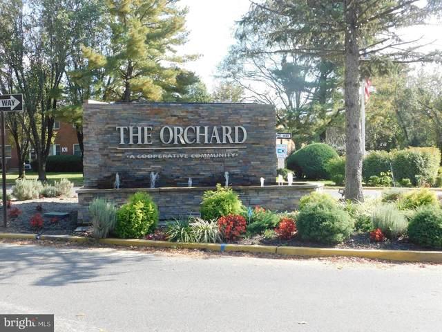 138 The Orchard F, EAST WINDSOR, NJ 08520 (MLS #NJME2000299) :: Kiliszek Real Estate Experts