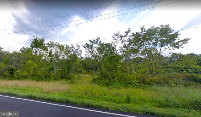 5295 Stump, PIPERSVILLE, PA 18947 (#PABU2000405) :: Blackwell Real Estate