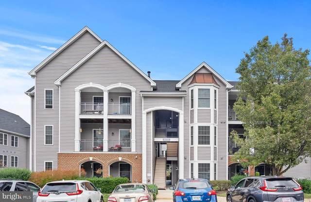 46606 Drysdale Terrace #302, STERLING, VA 20165 (#VALO2000397) :: CENTURY 21 Core Partners