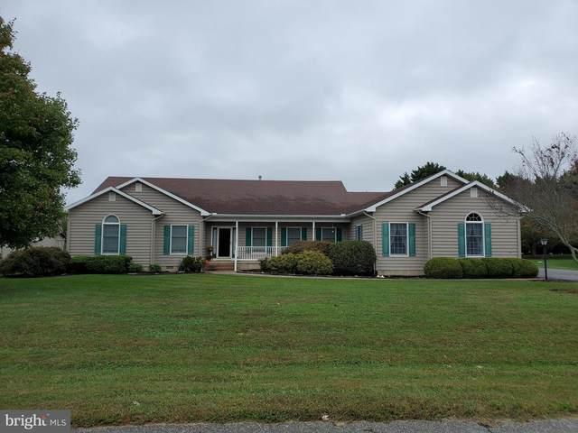 31025 Elm Drive, LEWES, DE 19958 (#DESU2000349) :: Bowers Realty Group