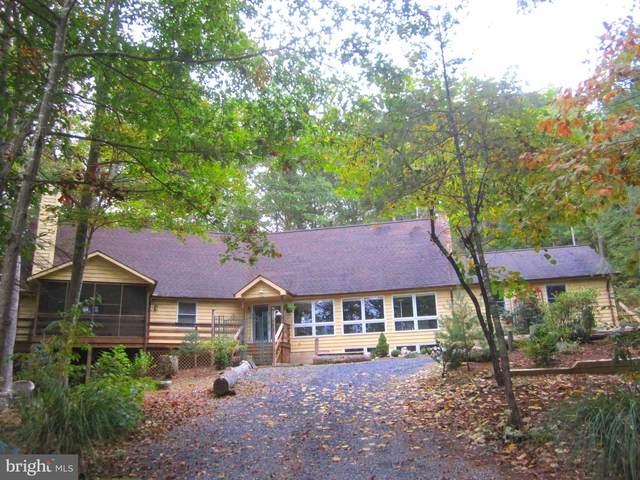 153 Ellis, BASYE, VA 22810 (#VASH2000053) :: Great Falls Great Homes