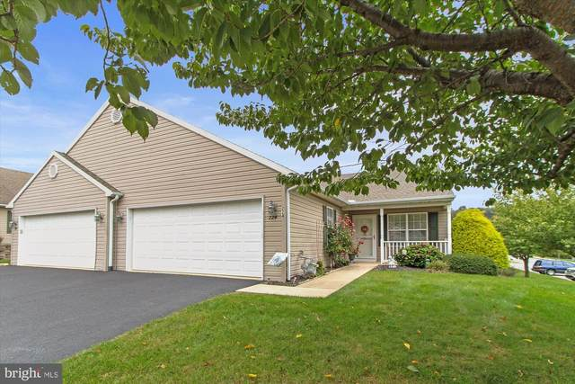 224 Equine Cove, RED LION, PA 17356 (#PAYK2000445) :: The Jim Powers Team