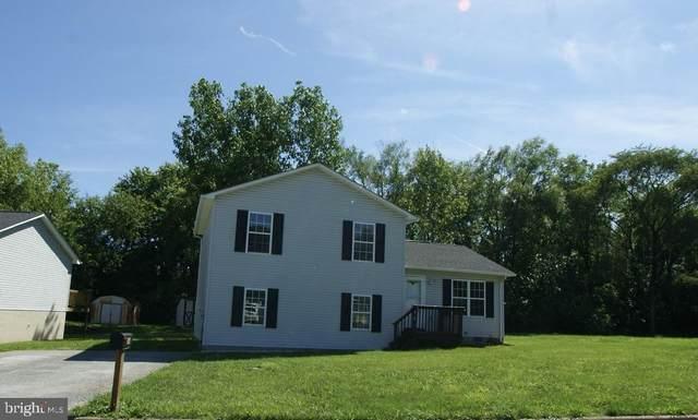 814 Butler Avenue, WINCHESTER, VA 22601 (#VAFV2000112) :: Sunrise Home Sales Team of Mackintosh Inc Realtors
