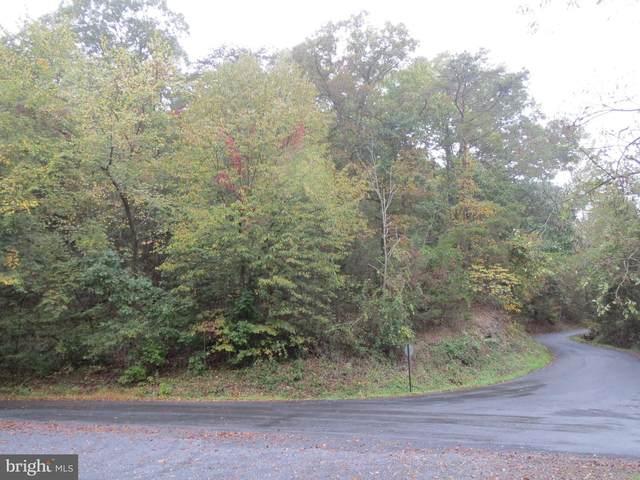 0 Stonewall Dr, BASYE, VA 22810 (#VASH2000057) :: Great Falls Great Homes