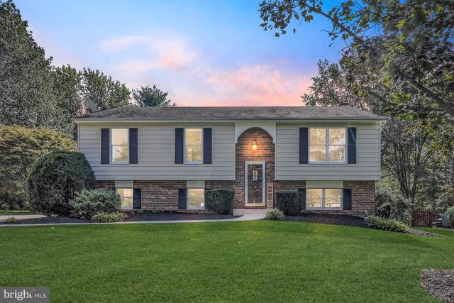 4717 Salterforth Pl, ELLICOTT CITY, MD 21043 (#MDHW2000257) :: New Home Team of Maryland
