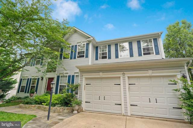 353 Locust Grove Drive, PURCELLVILLE, VA 20132 (#VALO2000726) :: Debbie Dogrul Associates - Long and Foster Real Estate