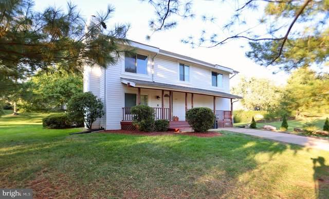 416 Oak Tree, STERLING, VA 20164 (#VALO2000459) :: A Magnolia Home Team