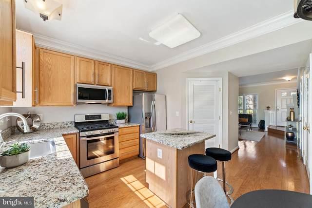 44263 Litchfield Terrace, ASHBURN, VA 20147 (#VALO2000461) :: Compass