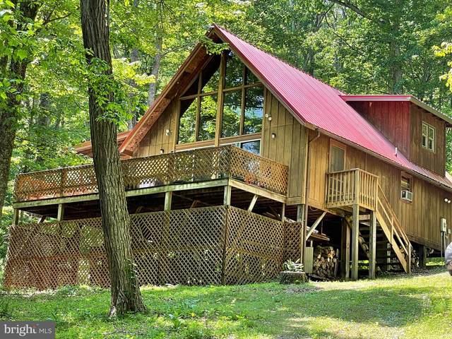 600 Wild Turkey Ridge, LOST RIVER, WV 26810 (#WVHD2000030) :: Jim Bass Group of Real Estate Teams, LLC