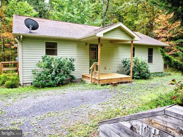 560 Ironwood Rd, MOUNT JACKSON, VA 22842 (#VASH2000073) :: Great Falls Great Homes