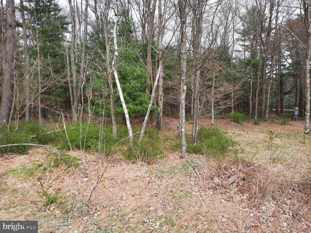 29I Caplos Road, WHITE HAVEN, PA 18661 (#PALU2000009) :: Linda Dale Real Estate Experts