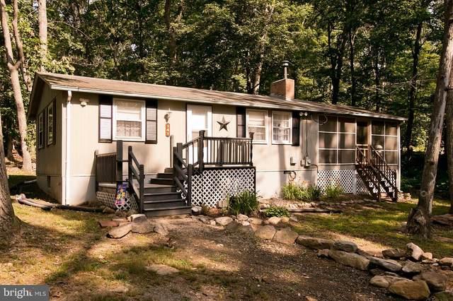 141 Red Fox Trail, WINCHESTER, VA 22602 (#VAFV2000124) :: AJ Team Realty