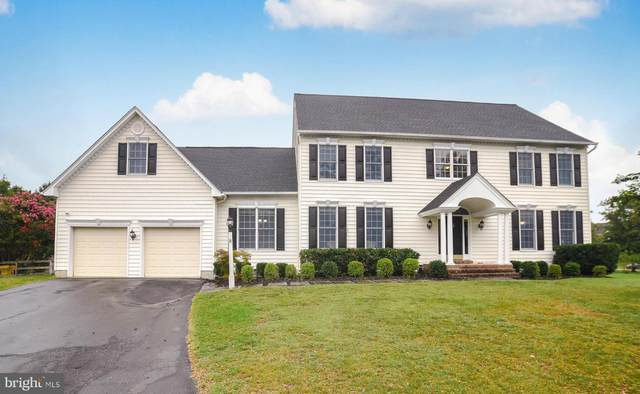 1343 Anglesey Drive, DAVIDSONVILLE, MD 21035 (#MDAA2000603) :: The Riffle Group of Keller Williams Select Realtors