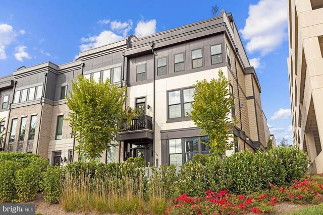 44665 Brushton Terrace, ASHBURN, VA 20147 (#VALO2000501) :: Crews Real Estate