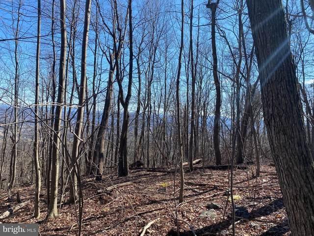 Back Road, TOMS BROOK, VA 22660 (#VASH2000083) :: The Miller Team
