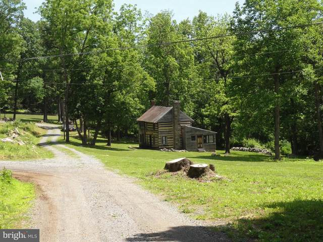 16623 Tree Crops Lane, ROUND HILL, VA 20141 (#VALO2000774) :: AJ Team Realty