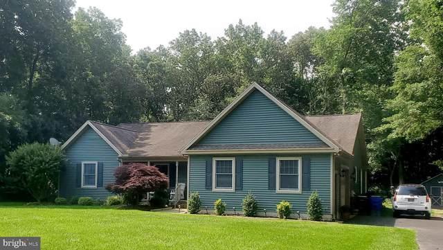 110 S White Cedar Drive, MILTON, DE 19968 (#DESU2000570) :: Bright Home Group