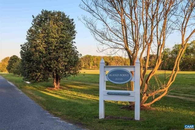 19 Bland Point Rd #19, DELTAVILLE, VA 23043 (#623143) :: Dart Homes