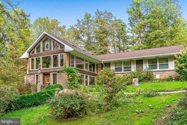 407 Mullen Hollow, BIRDSBORO, PA 19508 (#PABK2000431) :: Iron Valley Real Estate