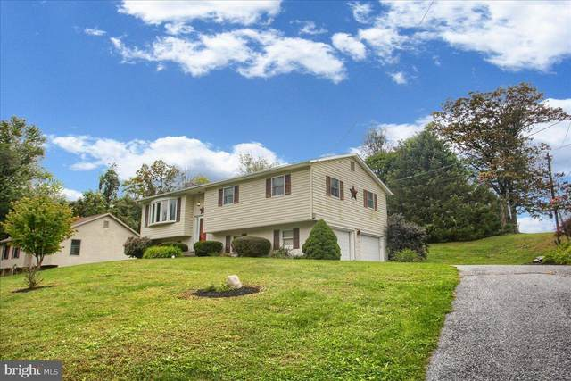 2 St Johns Drive, DUNCANNON, PA 17020 (#PAPY2000051) :: Ramus Realty Group