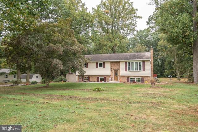 1665 Slate Hill Road, DRUMORE, PA 17518 (#PALA2000579) :: The Heather Neidlinger Team With Berkshire Hathaway HomeServices Homesale Realty