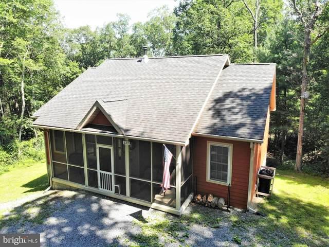 827 Mountain Slope Lane, FORT VALLEY, VA 22652 (#VASH2000060) :: Berkshire Hathaway HomeServices McNelis Group Properties