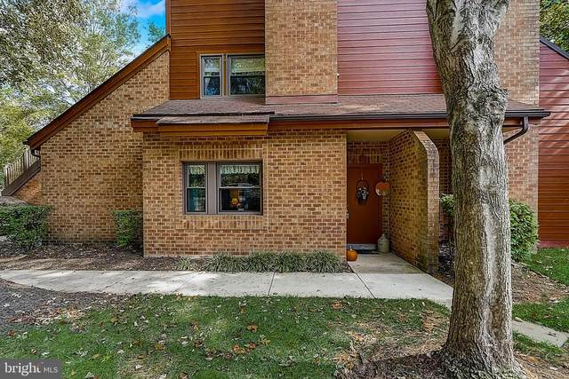 7523 Weather Worn Way B, COLUMBIA, MD 21046 (#MDHW2000371) :: Keller Williams Realty Centre