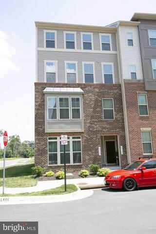 25330 Crested Iris Terrace, ALDIE, VA 20105 (#VALO2000938) :: Coleman & Associates