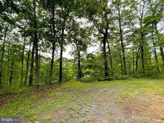 Heavens Tree, STAR TANNERY, VA 22654 (#VASH2000078) :: Debbie Dogrul Associates - Long and Foster Real Estate