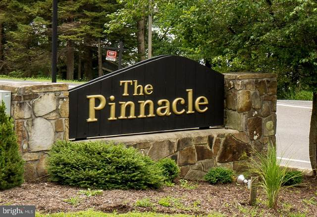 Bridgeview Lane, SWANTON, MD 21561 (#MDGA2000120) :: The Gold Standard Group