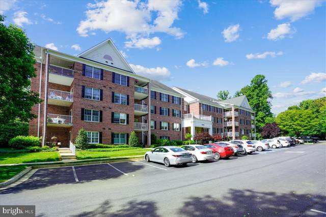 12030 Tralee Road #205, LUTHERVILLE TIMONIUM, MD 21093 (#MDBC2001184) :: City Smart Living