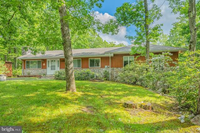 393 Fox Tail Road, OAKLAND, MD 21550 (#MDGA2000134) :: Peter Knapp Realty Group