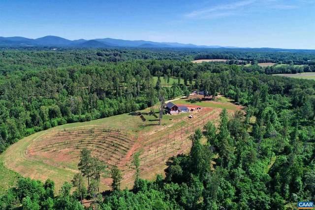 1685 Thompson Farm Road, CHARLOTTESVILLE, VA 22901 (#619100) :: Debbie Dogrul Associates - Long and Foster Real Estate