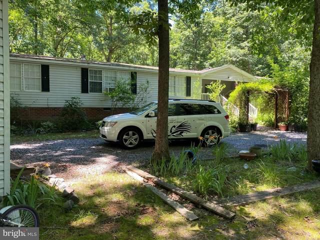 7188 Tumbleweed Place, FREDERICKSBURG, VA 22408 (#VACV2000054) :: Talbot Greenya Group