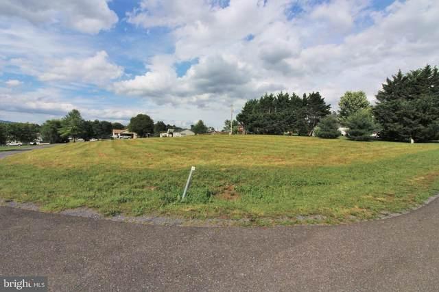 Mountain View Drive, MAURERTOWN, VA 22644 (#VASH2000112) :: Nesbitt Realty