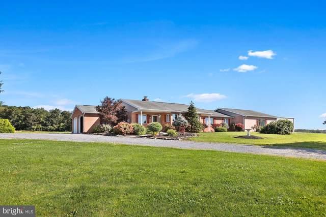 3279 Portico Road, CHAMBERSBURG, PA 17202 (#PAFL2000284) :: Liz Hamberger Real Estate Team of KW Keystone Realty