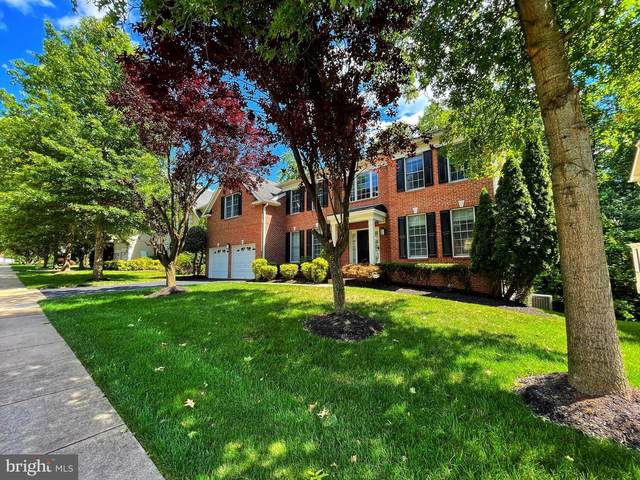 47403 Riverbank Forest Place, STERLING, VA 20165 (#VALO2001196) :: LoCoMusings
