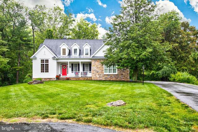 1305 Red Fox Court, BALTIMORE, MD 21286 (#MDBC2001360) :: The Mike Coleman Team