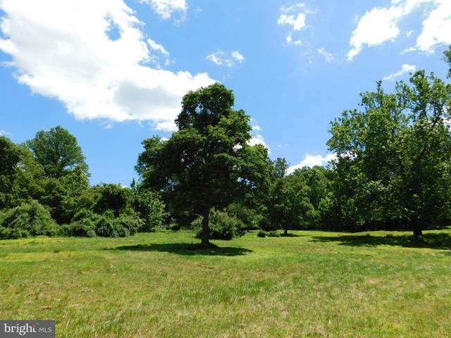 Old Beasman/A.K.A Irving Ruby Road, SYKESVILLE, MD 21784 (#MDCR2000326) :: Pearson Smith Realty
