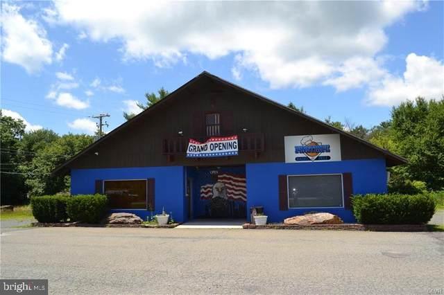 1795 State Route 903, JIM THORPE, PA 18229 (#PACC2000038) :: Colgan Real Estate