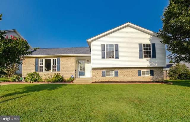22213 Goldenrod Drive, GREAT MILLS, MD 20634 (#MDSM2000310) :: Dart Homes